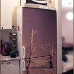 Decal nghệ thuật dán tủ lạnh